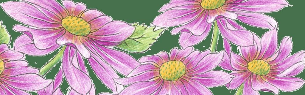 Künstler Farbstifte für Aquarell, Pastell uvm.